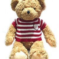 Plush Toys Dressed Bear 41909085011 -GLB