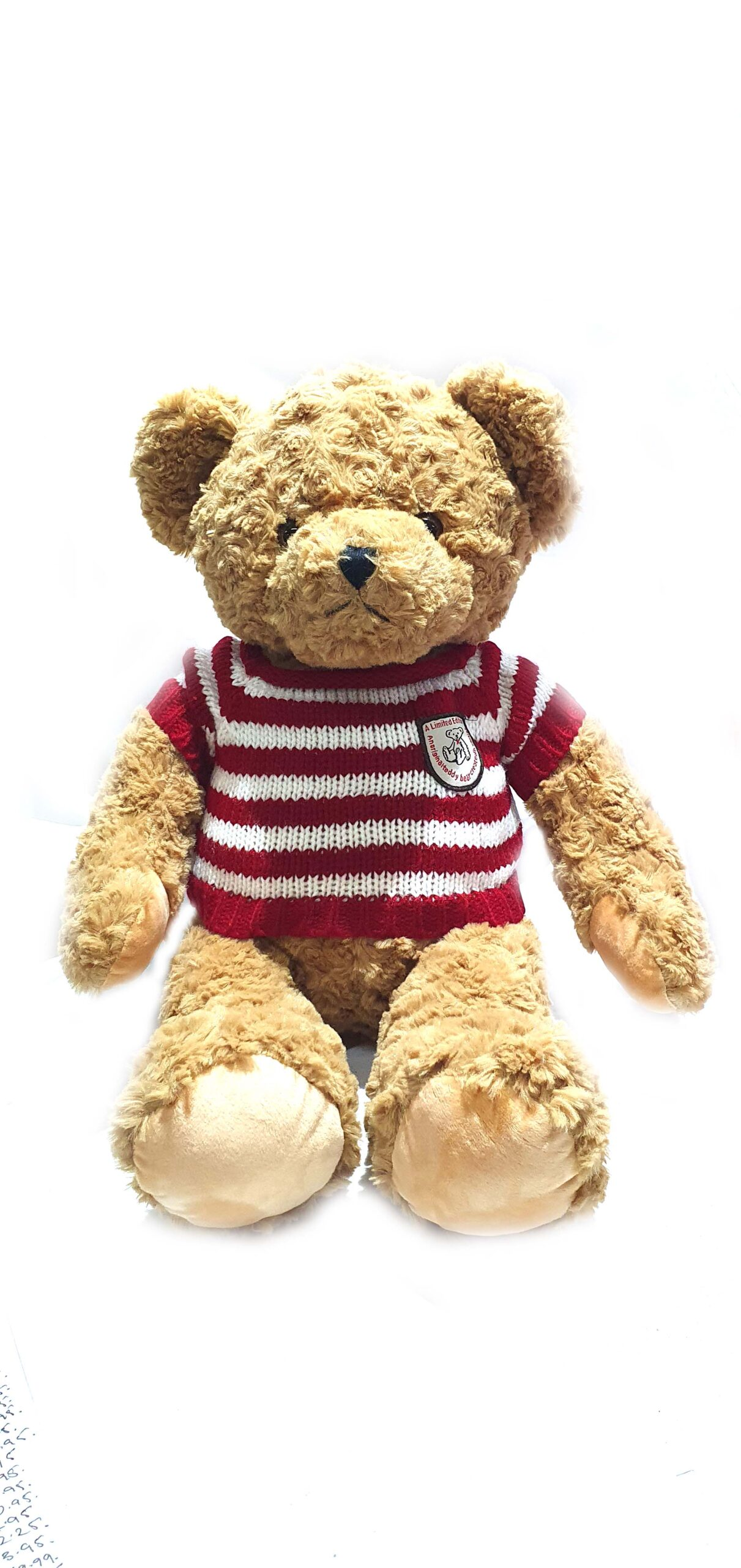 Plush Toys Dressed Bear #41909085011 -GLB